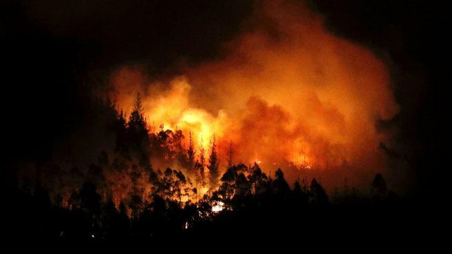 Queda estabilizado el incendio forestal de Montferri que afecta a unas 15 hectáreas