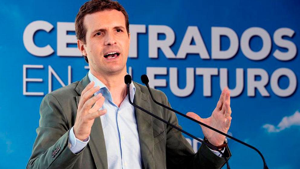 El presidente del PP, Pablo Casado. (Foto: EFE)