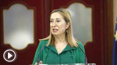 Ana Pastor, presidenta del Congreso de los Diputados. (EP)