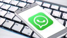 Aprende cómo reducir el tamaño de fotos y vídeos de WhatsApp