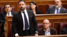 Santiago Abascal, que se estrena como diputado en esta XIII legislatura, en el Congreso de los Diputados. Foto: EP
