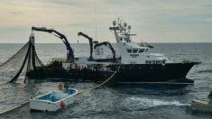 Barco de Balfegó