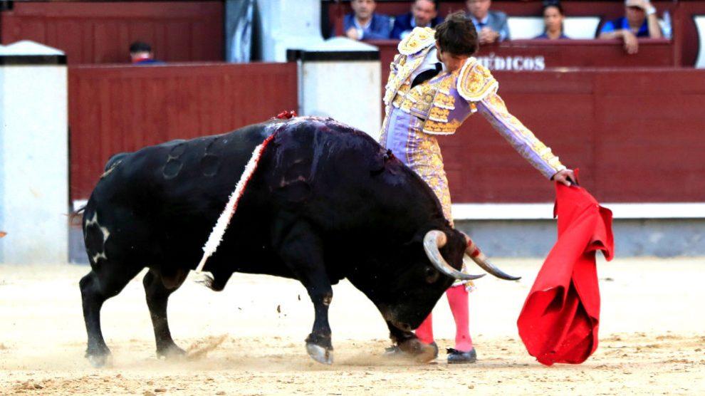 Castella da un pase de muleta a su segundo toro, este jueves en Madrid (Foto: EFE).