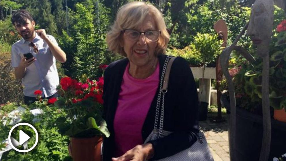 Manuel Carmena, de compras en un centro de jardinería