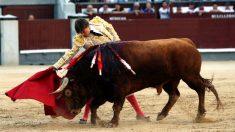 Juan Leal en un momento de su faena (Foto: EFE).