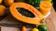 Todos los pasos para sembrar papayas de forma fácil