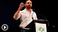 El presidente de VOX, Santiago Abascal (Foto: EFE).