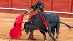 Morante de la Puebla en la plaza de toros de Aranjuez. Foto: EFE