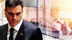 Pedro Sánchez crea empleo más precario que Rajoy.