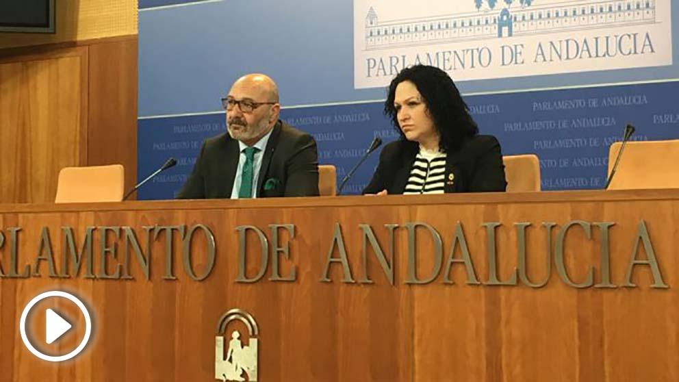 En rueda de prensa, el portavoz parlamentario de Vox, Alejandro Hernández, y la diputada Luz Belinda Rodríguez. Foto: Europa Press