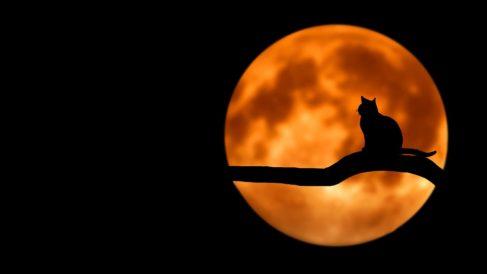 Descubre por qué se reduce la Luna