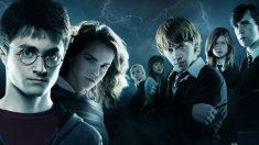 El 21 de junio de 2009, se publica el quinto libro de Harry Potter de JK Rowling «Harry Potter y la Orden del Fénix»