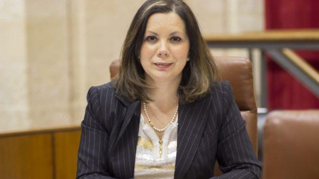VOX asegura que la conciliación entre PP, C's y VOX en Andalucía «es esencial y necesaria»