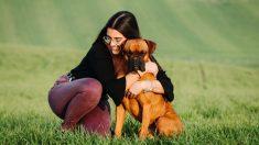 ¿Cuántas razas de perros hay?