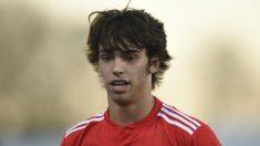 Joao Félix con el Benfica (AFP)