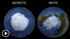Estudio vincula vientos antárticos con la temperatura del mar