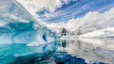 El deshielo en La Antártida puede tener terribles consecuencias