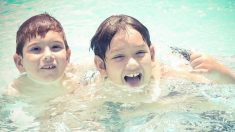 Consejos de prevención en la piscina