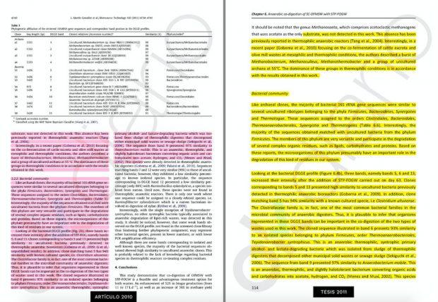 La página 114 de la tesis calca el contenido de un artículo de 2010 firmado por Martín con investigadoras de Portugal.