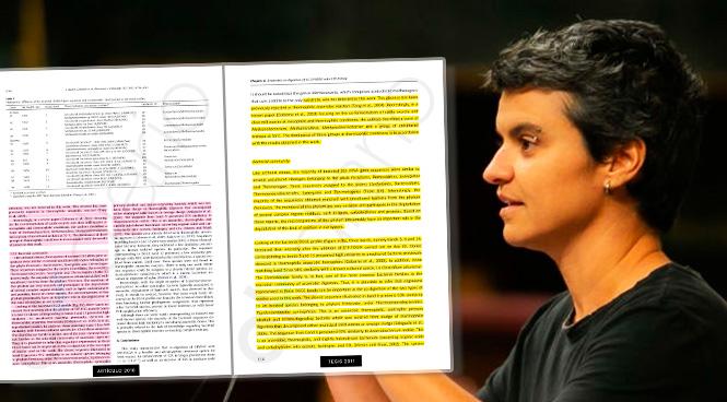 El contenido plagiado en la tesis de Lucía Martín, concejala de Vivienda de Colau, genera dudas sobre la autoría intelectual.
