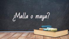 Se escribe malla o vaya