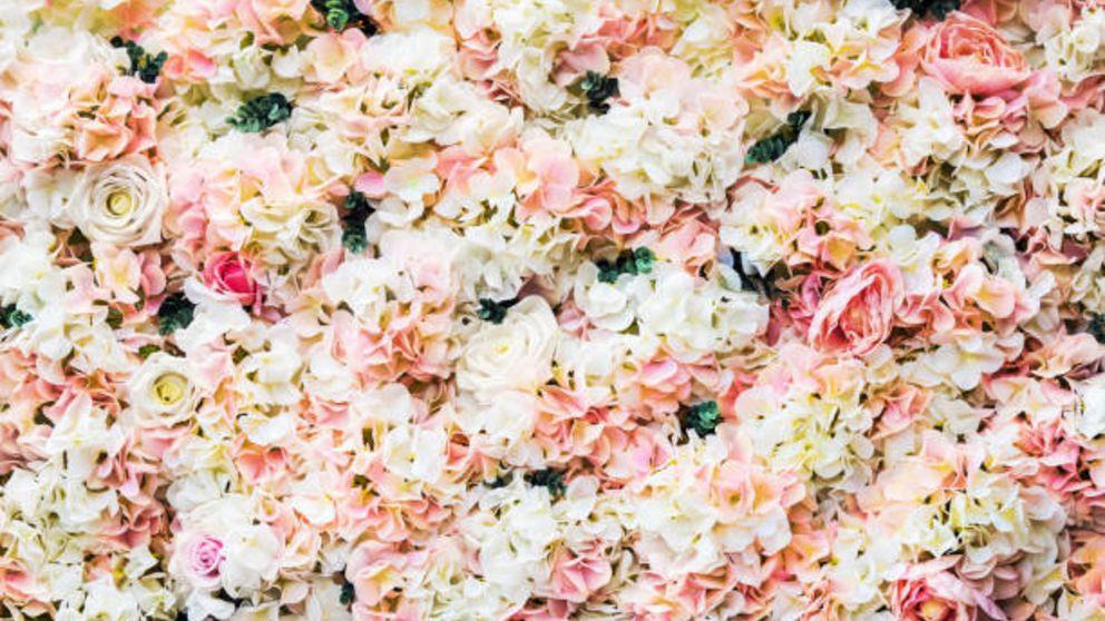 C mo hacer un muro de flores para decorar de forma f cil for Como hacer criadero de truchas