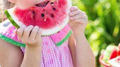 Claves de la nutrición infantil
