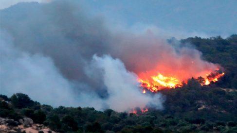 Incendio en Tarragona (Foto: EFE)