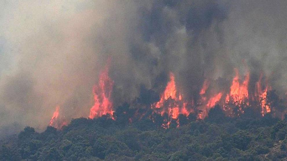 Captura de video del incendio declarado en el municipio de Almorox en Toledo, este sábado. Foto: EFE