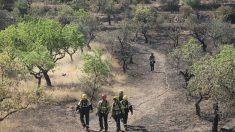 Bomberos en la zona afectada por el incendio de la Ribera del Ebro. Foto: EFE