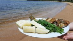 Si quieres probar a cocinar ingredientes diferentes para romper la monotonía, la yuca es una gran idea. ¿Cuál es la mejor forma de cocinar yuca