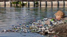 Pequeños gestos pueden mejorar el estado de los ríos
