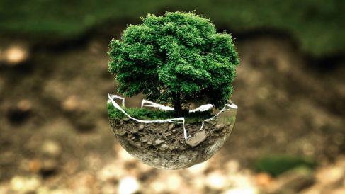 Proteger el medio ambiente está en las manos de todos