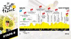 Perfil de la etapa 8 del Tour de Francia.
