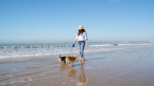 refrescar a tu perro este verano