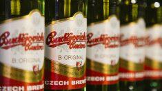 Hijos de Rivera, distribuidor oficial de la emblemática cervecera checa Budvar (Foto: Estrella Galicia)