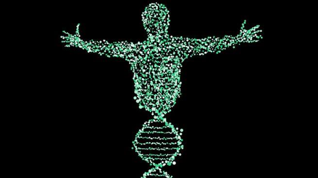 locus genético