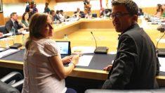 Tania Sánchez e Íñigo Errejón (Más Madrid) en una Junta de Portavoces. (Foto. EP)