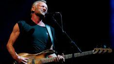 El músico británico Sting, de 67 años.  Foto: AFP