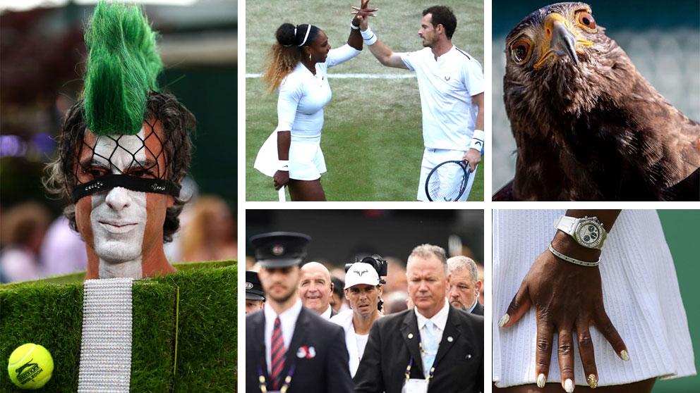 Las-imágenes-más-curiosas-de-Wimbledon-2019-(Getty-e-Instagram-de-la-cuenta-oficial-de-Wimbledon)
