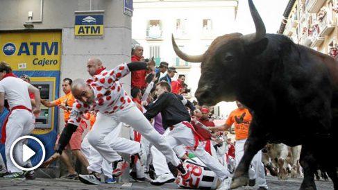 Uno de los toros de La Palmosilla durante el sexto encierro de San Fermín.