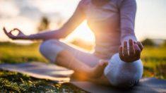 Guía de pasos para practicar el fitness ecológico