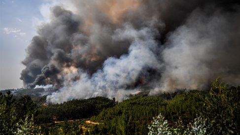 Incendios en Portugal (Foto: AFP)