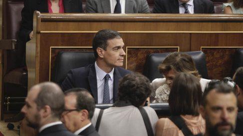Pedro Sánchez en su escaño del Congreso de los Diputados. (Foto: Francisco Toledo).