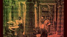 Conoce las mayores bibliotecas destruidas en la historia