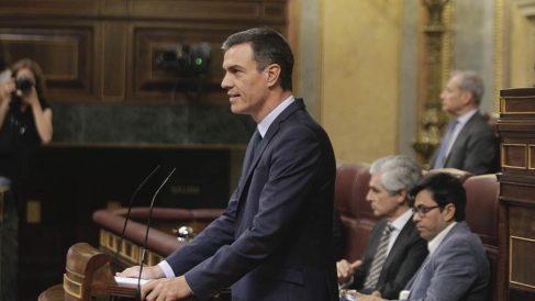 Pedro Sánchez durante la sesión de investidura de este jueves. (Foto: Francisco Toledo).