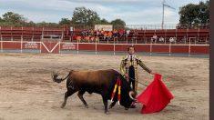 Lama de Góngora (Foto: @luciahg35 @altoroweb)