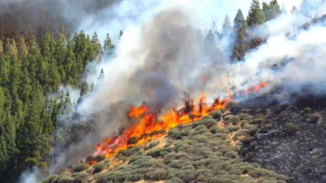 El incendio de Artenara (Gran Canaria) sigue activo y fuera de control tras quemar más de 100 hectáreas