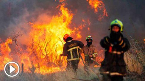 Los incendios forestales, en cifras récord este 2019.