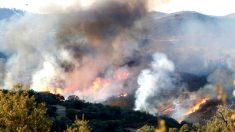 Imagen del incendio declarado en El Madroño (Foto: EFE).